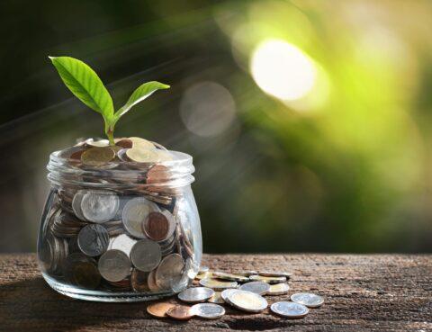 Верховна Рада прийняла за основу збільшення гарантованої суми відшкодування вкладів